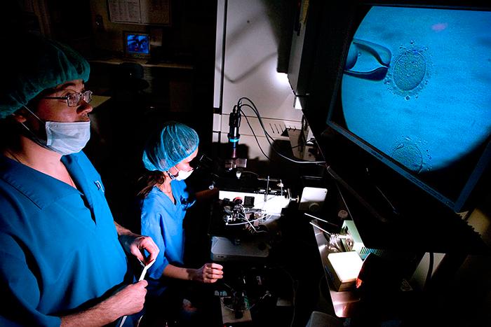 Оплодотворение Эмбрионов после пункции фоликулов