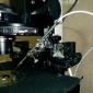 оборудование для оплодотворения эмбрионов