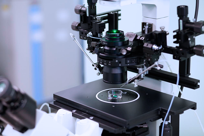 Система для визуализации ооцитов и проведения ИКСИ, ИМСИ, а также манипуляции с эмбрионом