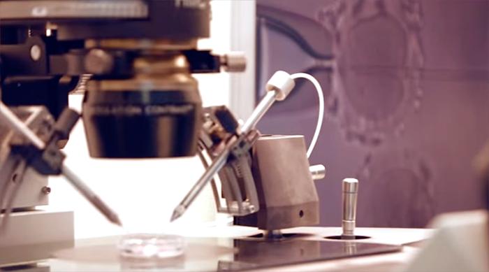 Оплодотворения эмбрионов в отделения эмбриологии в клиники