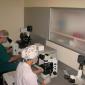 Отделение Эмбриологии в клинике