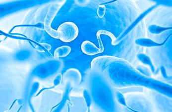 Азооспермия при мужском бесплодии