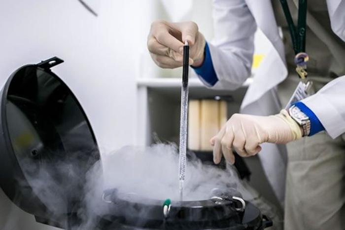 Криоконсервация эмбрионов и яйцеклеток при ЭКО