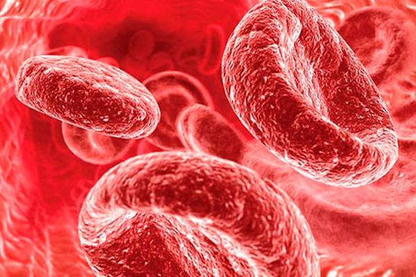 Низкий уровень гемоглобина в процессе ЭКО беременности