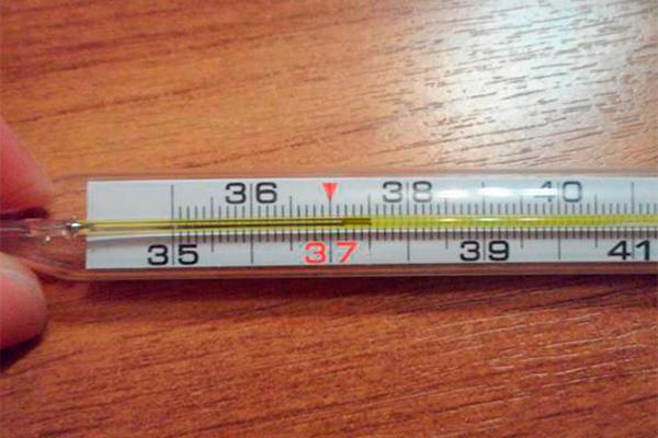 Температура тела 37,5 при ЭКО беременности