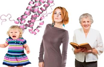 Норма пролактина у женщин по возрасту