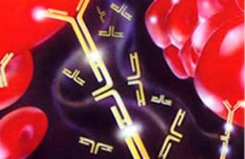 Повышенный Д-Димер после переноса эмбрионов