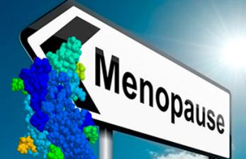Норма гормона ФСГ у женщин при менопаузе