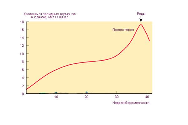 Изменение концентрации прогестерона в период беременности