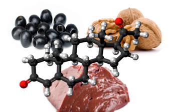 В каких продуктах содержится прогестерон