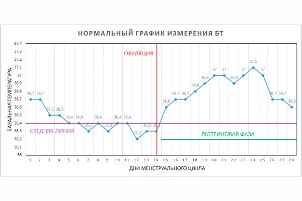 Вычисление овуляции с помощью графика базальной температуры