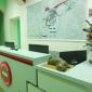 Ресепшн в медицинском центре «ЛОДЭ» (Гродно)