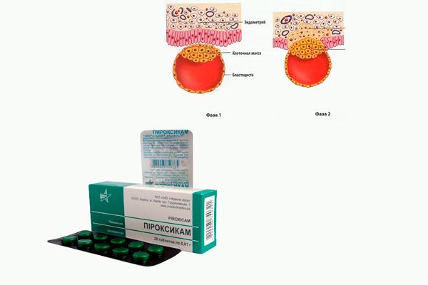 Положительное влияние Пироксикама на прикрепление эмбриона к эндометрию