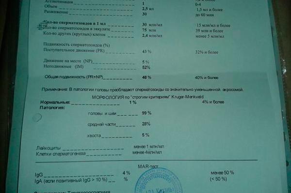 Расшифровка МАР теста
