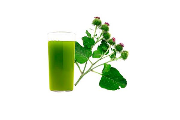 Сок из листьев лопуха в помощь при цистаденоме яичника