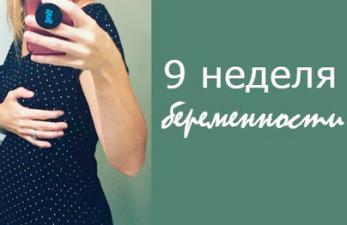 9 неделя беременности: развитие плода и все ощущения будущей мамы