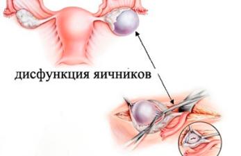 Как разбудить спящие яичники: диетическое питание и народные методы
