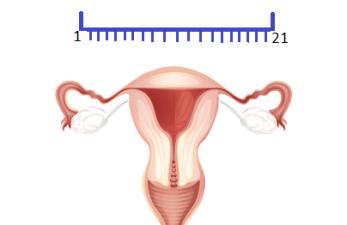 korotkiy-menstrualnyy-cikl