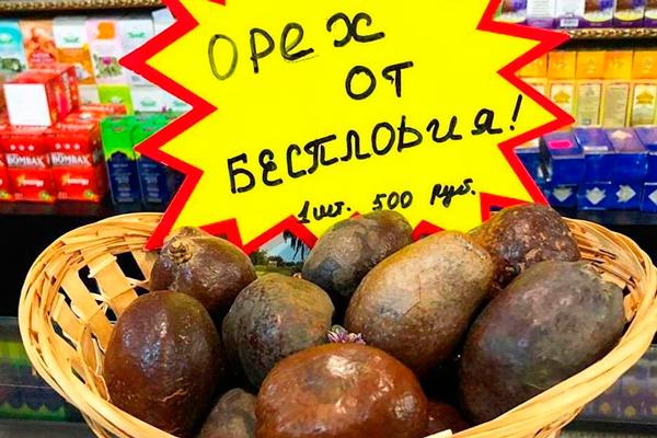 Продажа орехов Мохилхин
