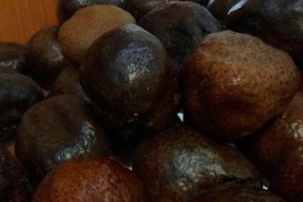 Внешний вид орехов Мохилхин