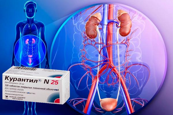 Улучшение кровообращения при приеме лекарства Курантил
