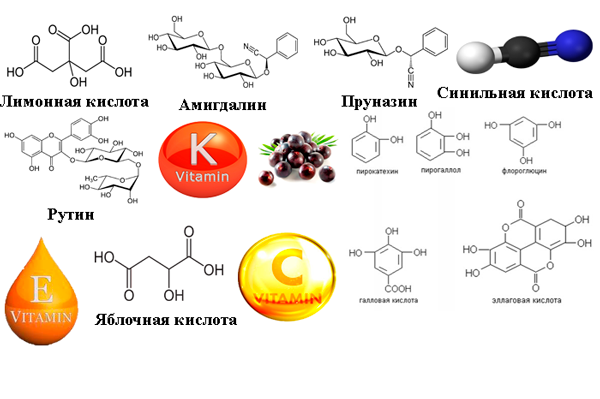 Полезные вещества в составе черемухе