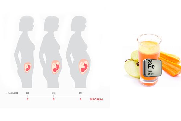 Пополнение необходимого количества железа в организме употребляя яблучно-морковный сок на втором триместре беременности