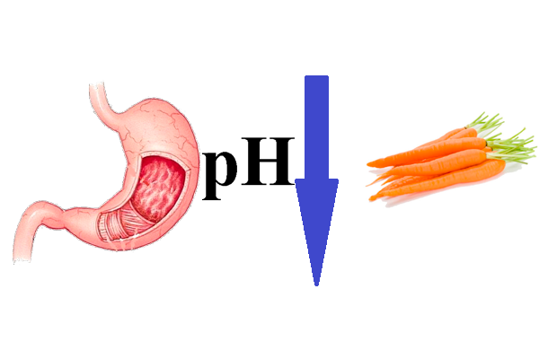 Снижение кислотности в желудки из-за употребления моркови на первом триместре беременности