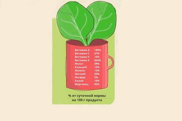 Полезные вещества в составе шпината