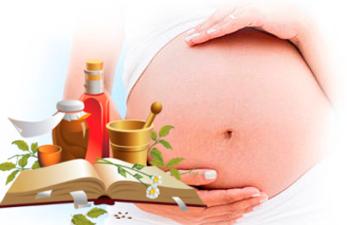 Фитотерапия при беременности: поможет или повредит народная методика?