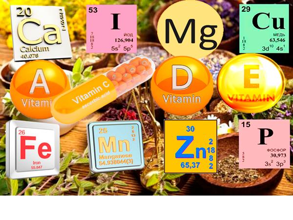 Полезные минералы и витамины, которыми можно обогатить организм с помощью фитотерапии при беременности