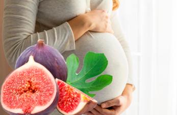 Инжир во время беременности: польза и вред фрукта для женщины и ребенка